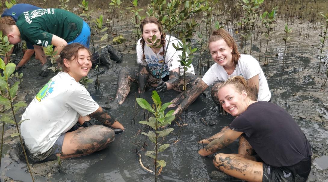 Glada ungdomsvolontärer planterar mangroveträd längs med kusten i Thailand på deras ungdomsresa.